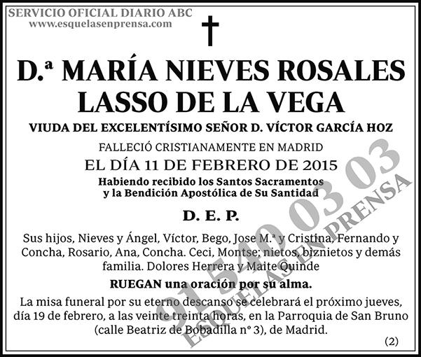 María Nieves Rosales Lasso de la Vega